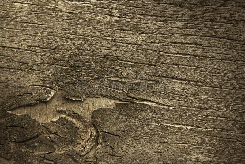 Casca envelhecida