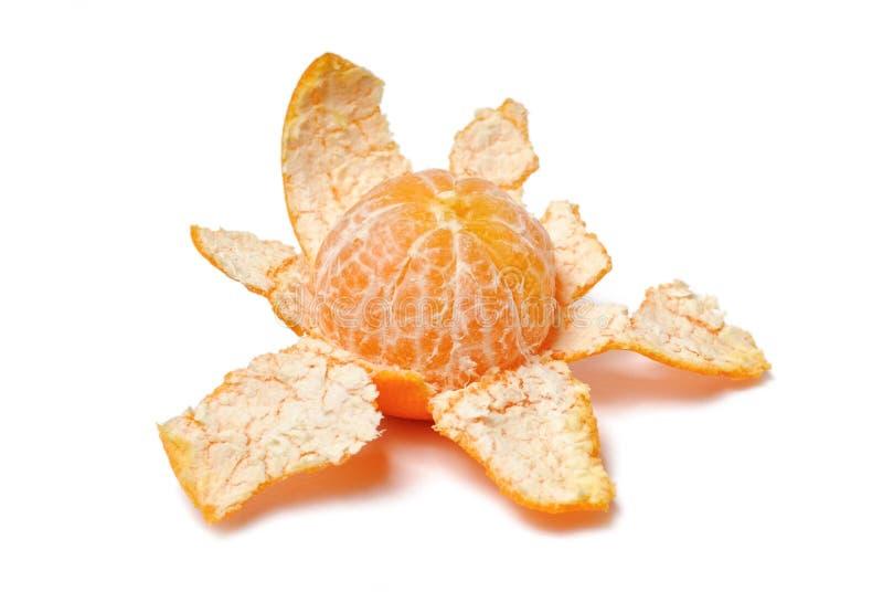 Casca Purified do mandarino imagem de stock