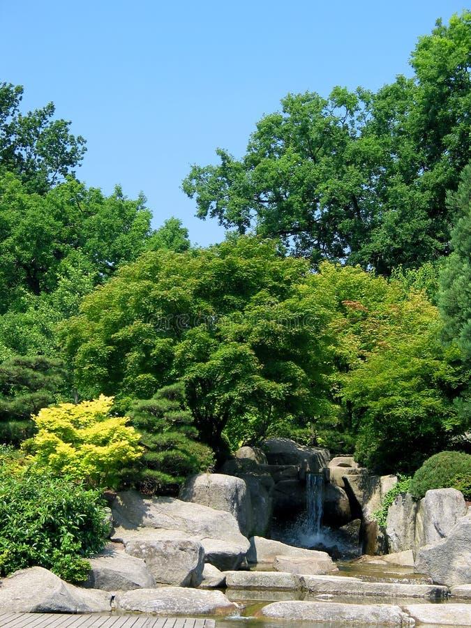 Download Cascada imagen de archivo. Imagen de verde, outdoor, árbol - 180307
