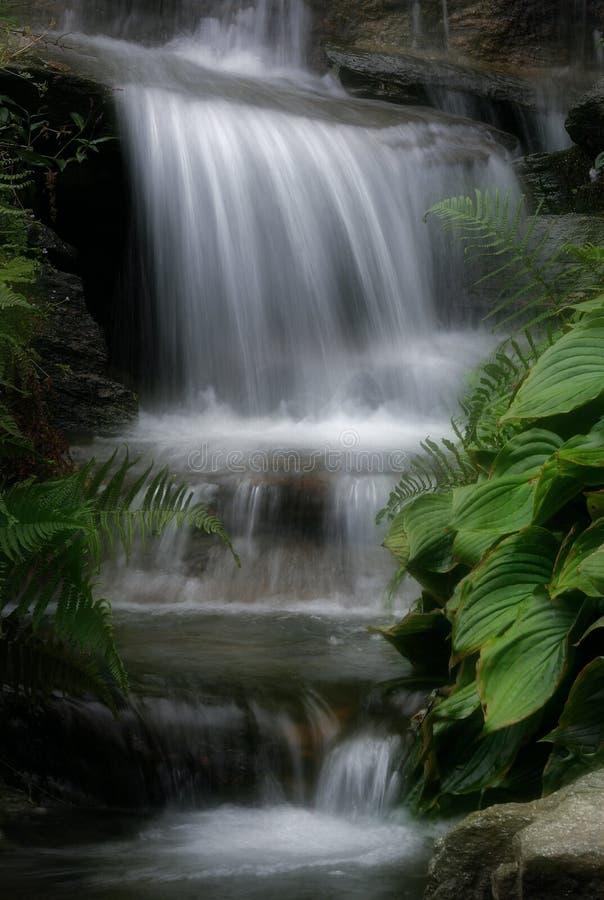 Download Cascada imagen de archivo. Imagen de catarata, rapids, caídas - 25341