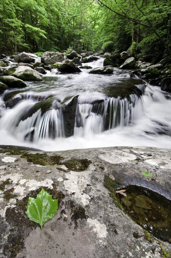 Cascada ahumada de las montañas fotografía de archivo libre de regalías
