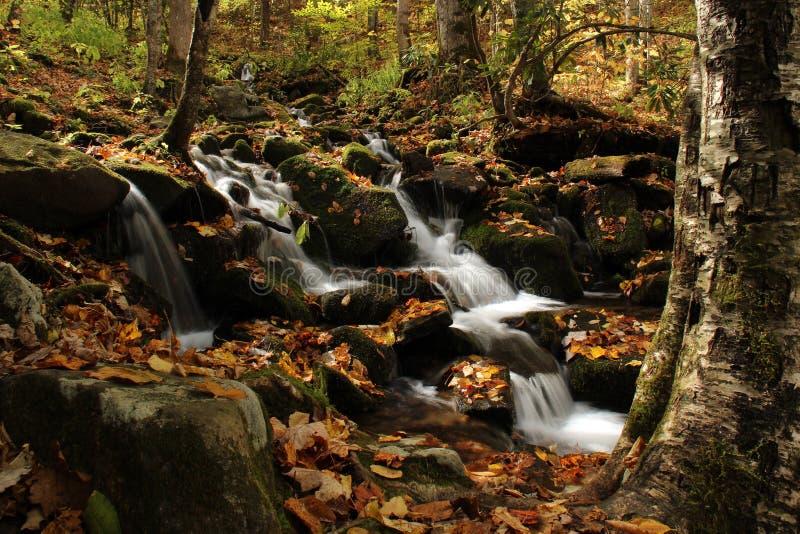 Cascada ahumada de las montañas imagen de archivo