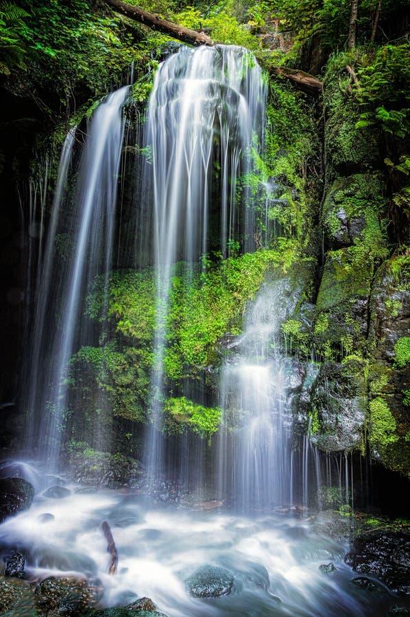 Cascada - Amselfall - Alemania fotos de archivo
