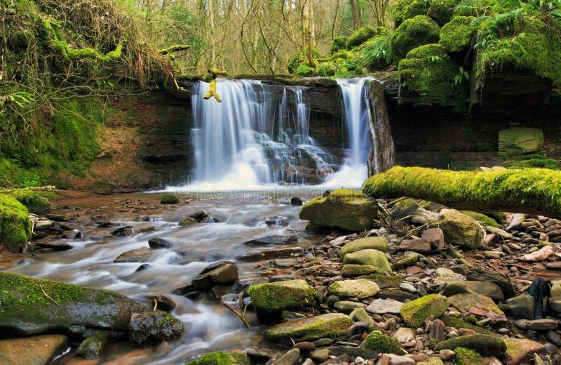 Cascada borrosa en el río Ennig; en la reserva de naturaleza de Pwll y Wrach imagen de archivo libre de regalías