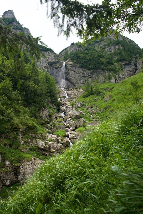 Cascada Cárpatos del valle de las montañas de Bucegi imágenes de archivo libres de regalías