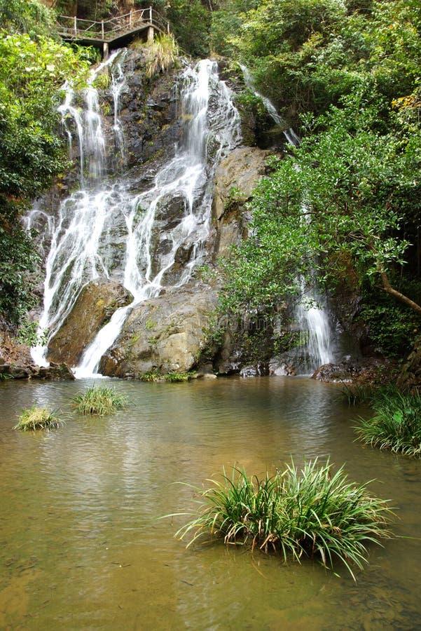 Cascada cerca de la montaña de Wuyishan, provincia de Fujian, China foto de archivo