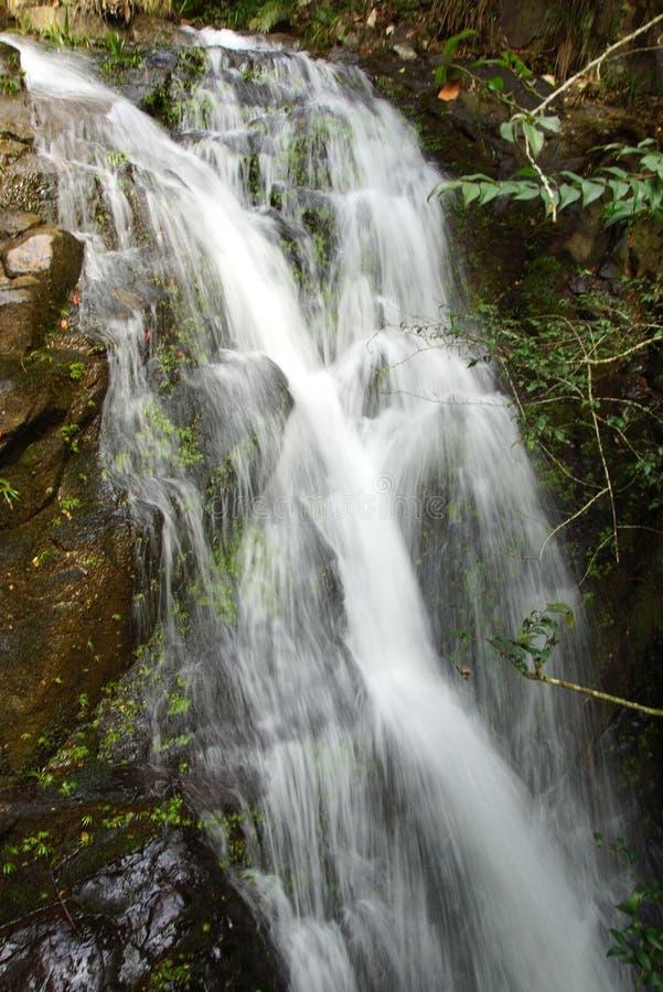 Cascada cerca de la montaña de Wuyishan, provincia de Fujian, China fotografía de archivo libre de regalías