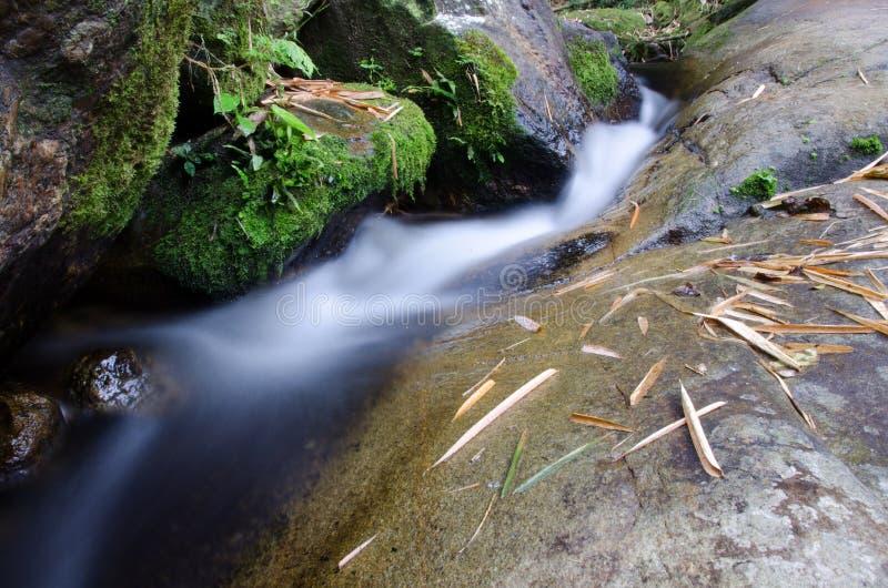 Cascada con la piedra del musgo verde en la selva tropical, Kiriwong Vil imagenes de archivo