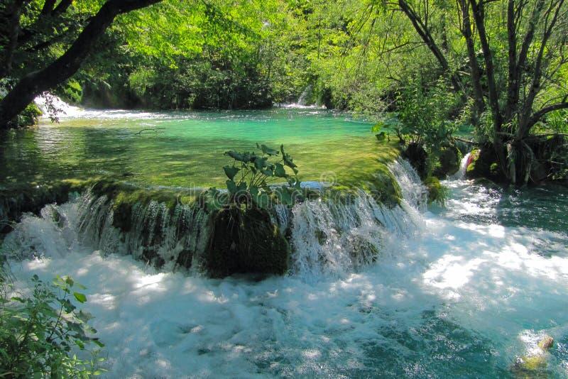 Cascada con las pequeñas cascadas del agua en el parque nacional de los lagos Plitvice en Croacia foto de archivo libre de regalías