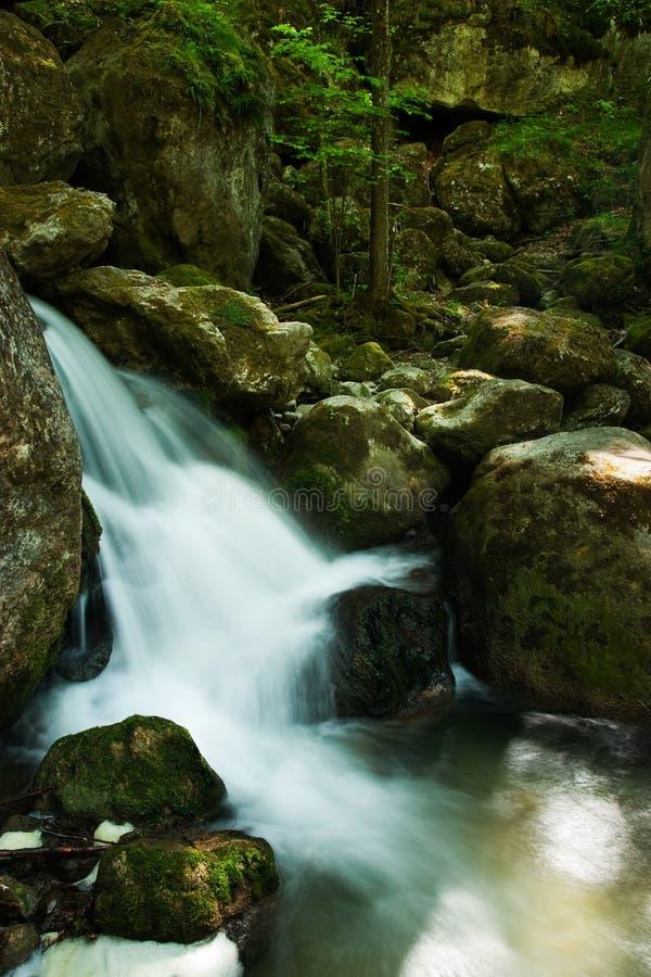 Cascada con las rocas cubiertas de musgo en bosque imágenes de archivo libres de regalías