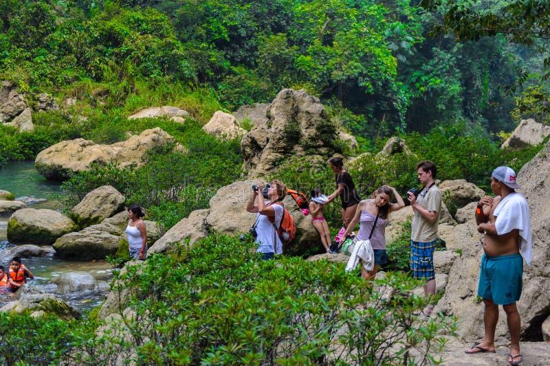 Cascada De brzęczenie, siklawa w dżungli Chiapas, Mexi fotografia royalty free