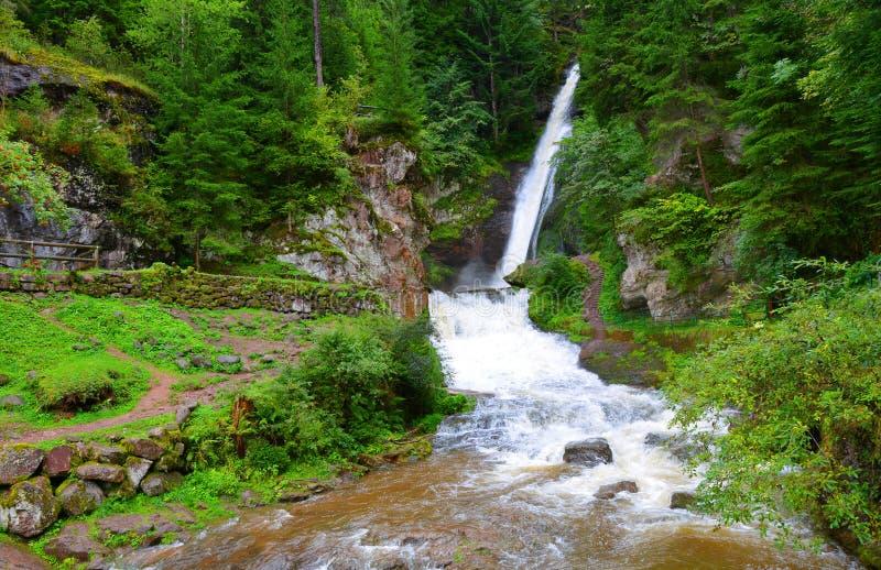 Cascada de Cavalese en un valle Val di Fiemme fotos de archivo libres de regalías