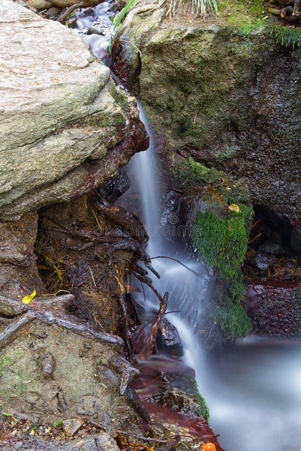Download Cascada De Conexión En Cascada En Crimea Imagen de archivo - Imagen de planta, cascada: 41919741