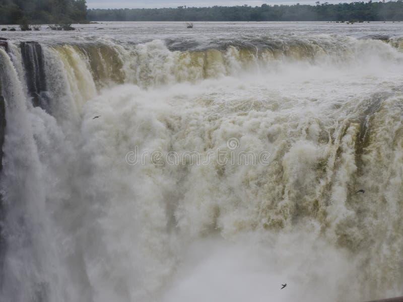 Cascada de Iguazu en la Argentina fotos de archivo libres de regalías