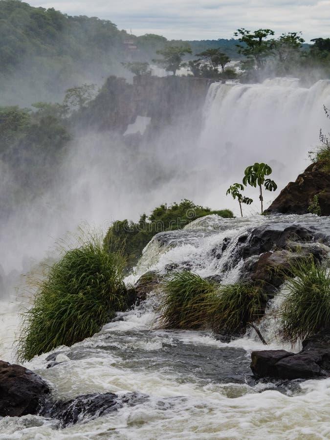 Cascada de Iguazu en la Argentina fotografía de archivo
