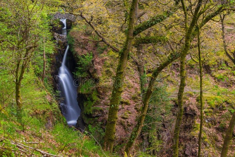 Cascada de la fuerza de Aira, Cumbria, Inglaterra, Reino Unido imágenes de archivo libres de regalías