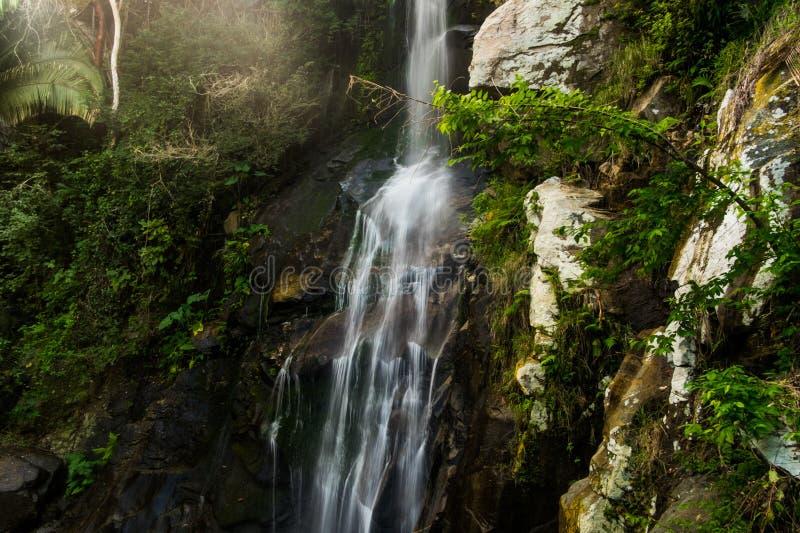 Cascada de la selva tropical; Caídas de Yelapa fotografía de archivo libre de regalías
