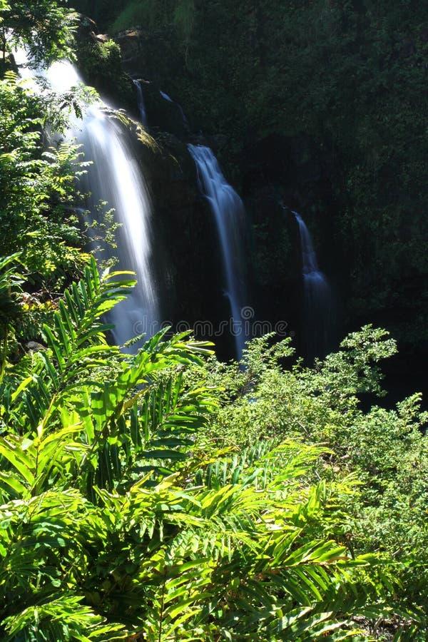 Cascada de Maui foto de archivo