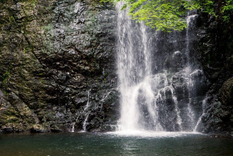 Cascada de Minoo, Osaka, Japón en verano imagen de archivo libre de regalías
