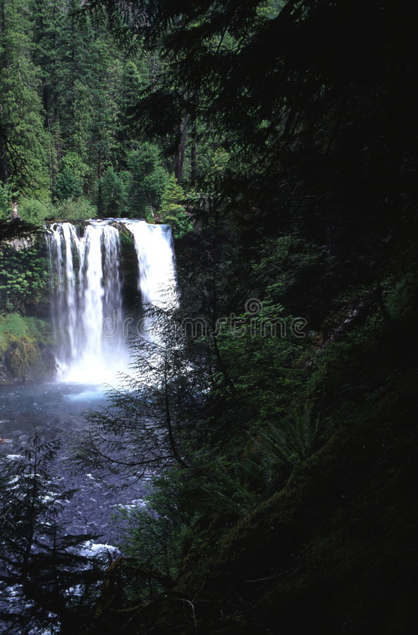 Cascada de Oregon imagenes de archivo