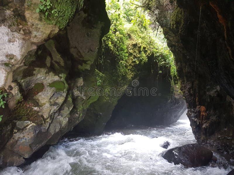 Cascada de peguche royaltyfria foton