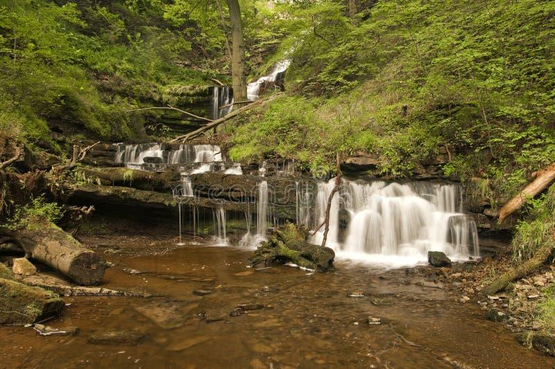 Cascada de Scalebar, cerca del Settle, Yorkhire. fotografía de archivo
