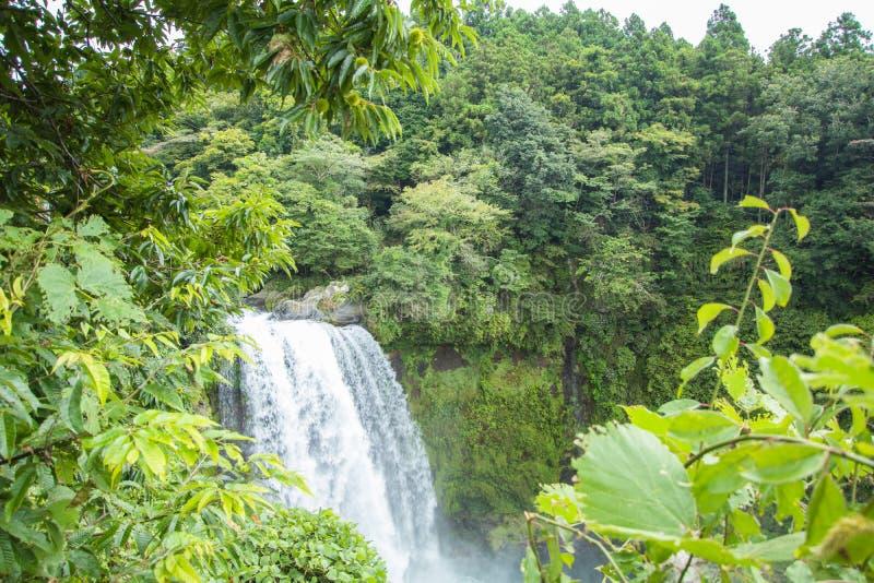 Cascada de Shiraito cerca del Mt Fuji en la prefectura de Fujinomiya, Jap imagen de archivo