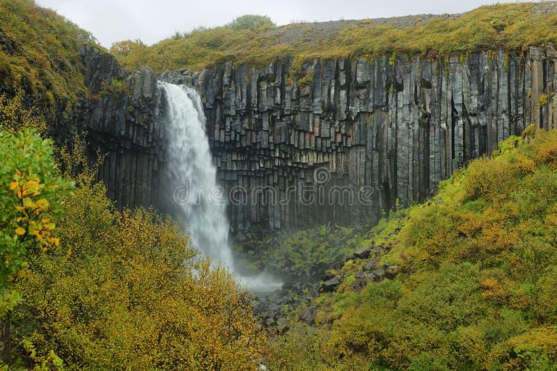 Cascada de Svartifoss fotografía de archivo