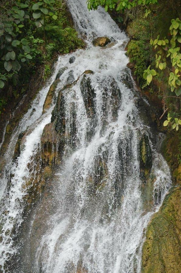 Cascada de Tamasopo стоковые фотографии rf
