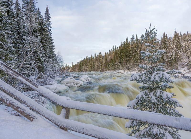 Cascada de Tannoforsen en Suecia en invierno foto de archivo