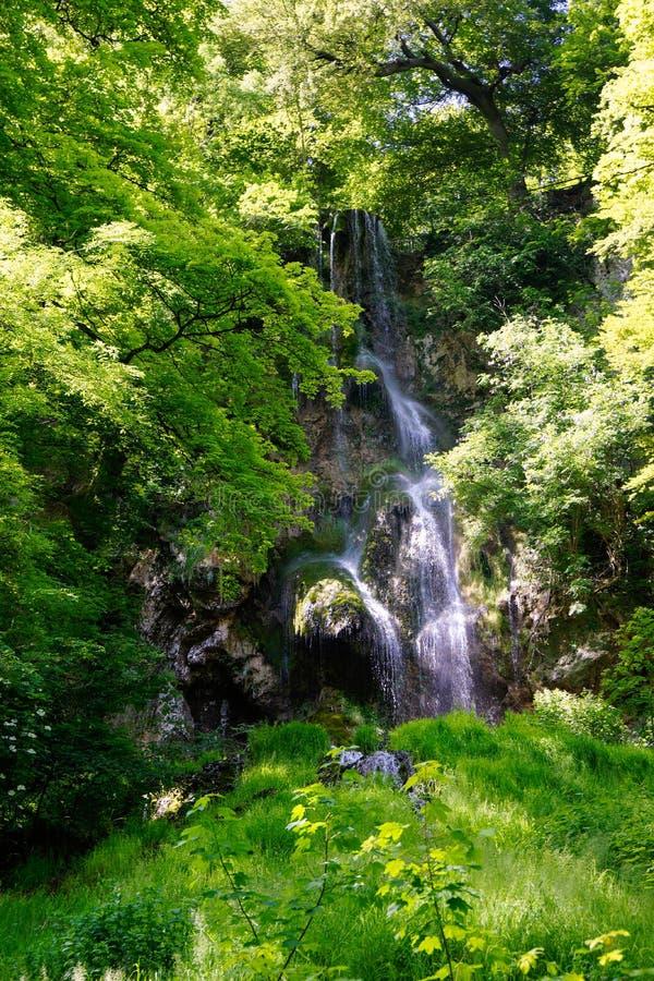 Cascada de Urach en verano con muchas plantas imagen de archivo