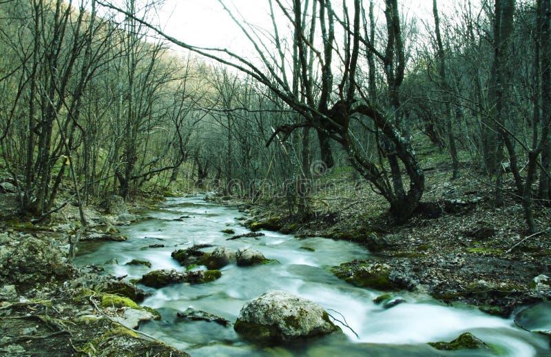 Cascada del agua fotografía de archivo