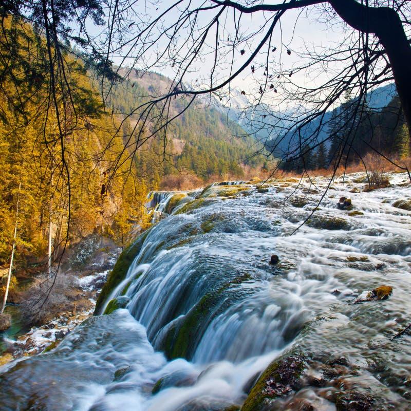 Cascada del bajío de la perla en el valle de Jiuzhai imagen de archivo libre de regalías