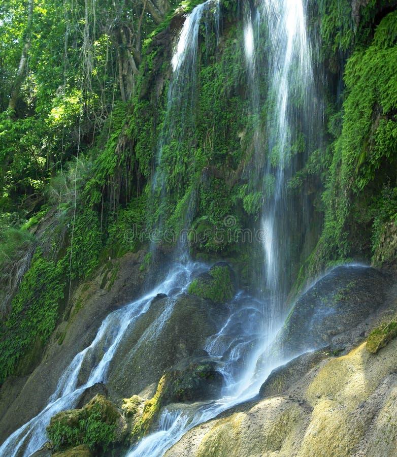 Cascada del EL Nicho foto de archivo libre de regalías