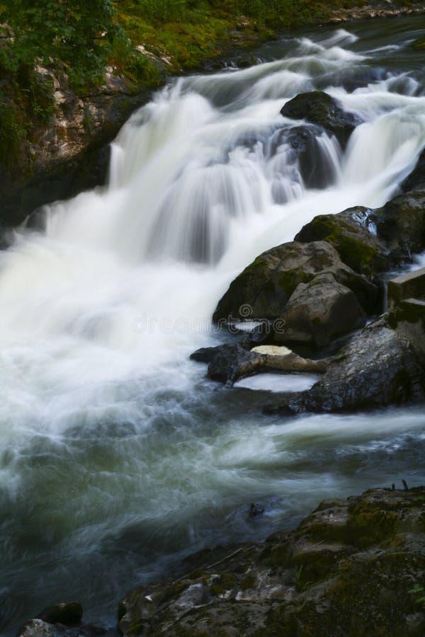 Cascada del noroeste pacífica imagen de archivo