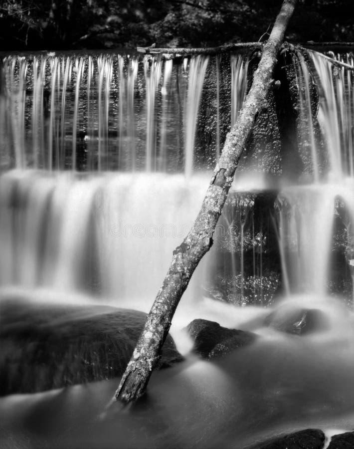 Cascada del paso con una rama pegada - tiró con una cámara análoga 4x5 imagenes de archivo