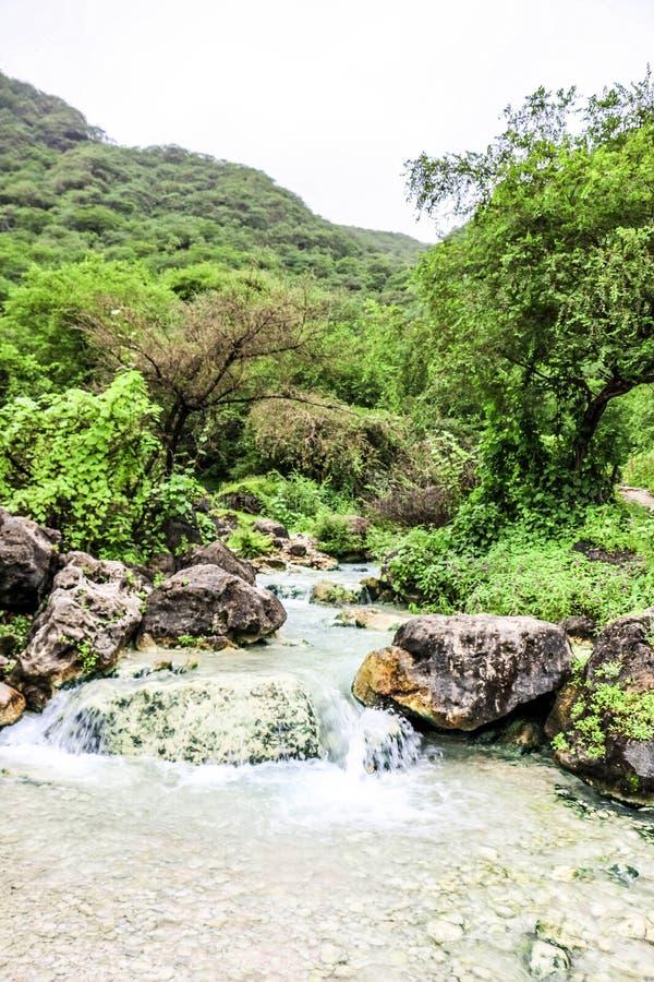 Cascada en Ayn Khor y paisaje verde enorme, ?rboles y monta?as de niebla en el centro tur?stico, Salalah, Om?n fotos de archivo