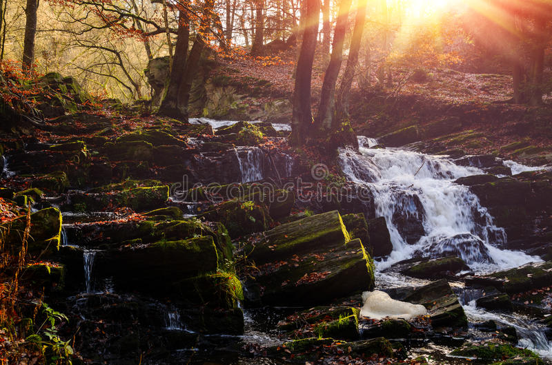 Cascada en bosque brumoso del otoño imagenes de archivo