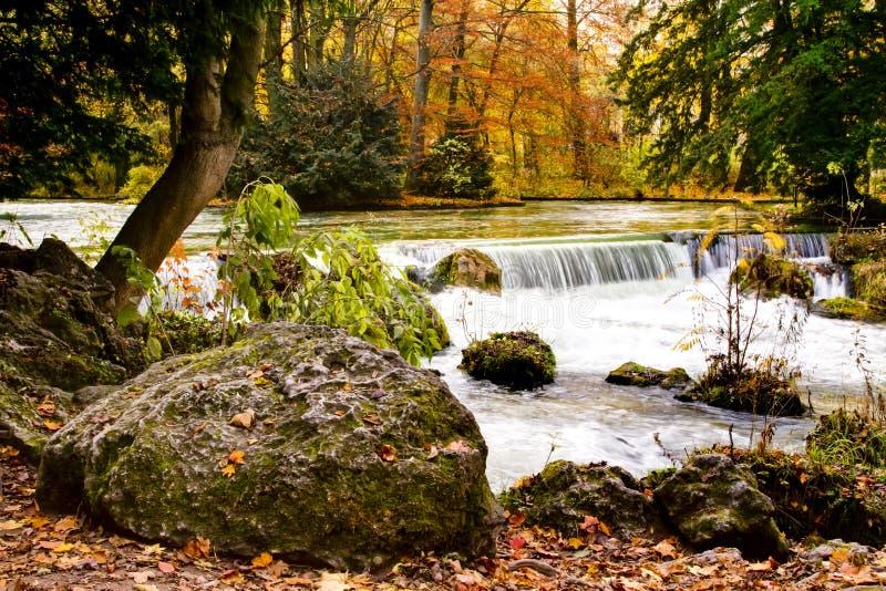 Cascada en bosque del otoño fotografía de archivo