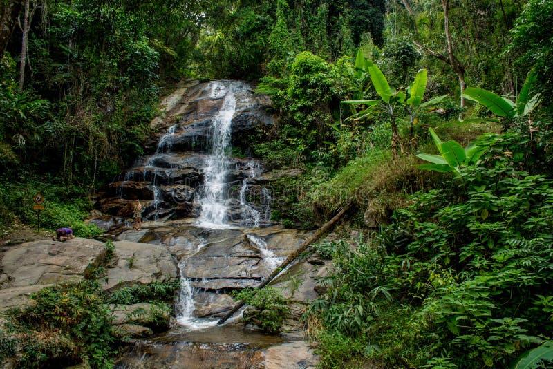 Cascada en bosque tropical de la selva verde imagenes de archivo