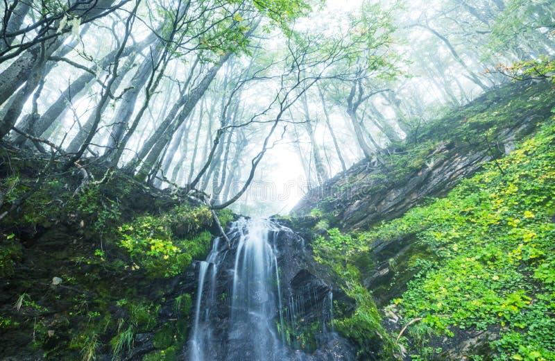 Cascada en Chile fotografía de archivo libre de regalías