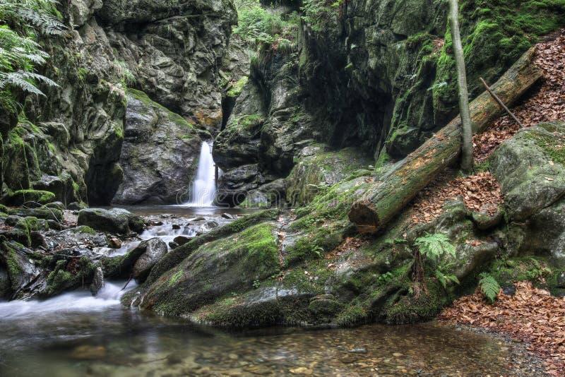 Cascada en el arroyo de plata, República Checa fotos de archivo libres de regalías