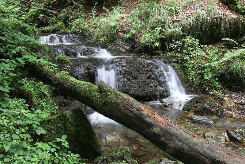 Cascada en el arroyo de plata, República Checa foto de archivo