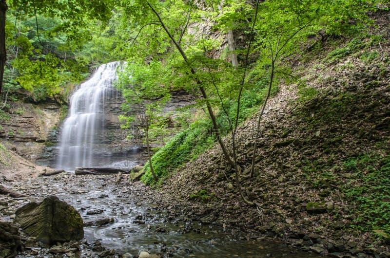 Cascada en el bosque fotografía de archivo libre de regalías