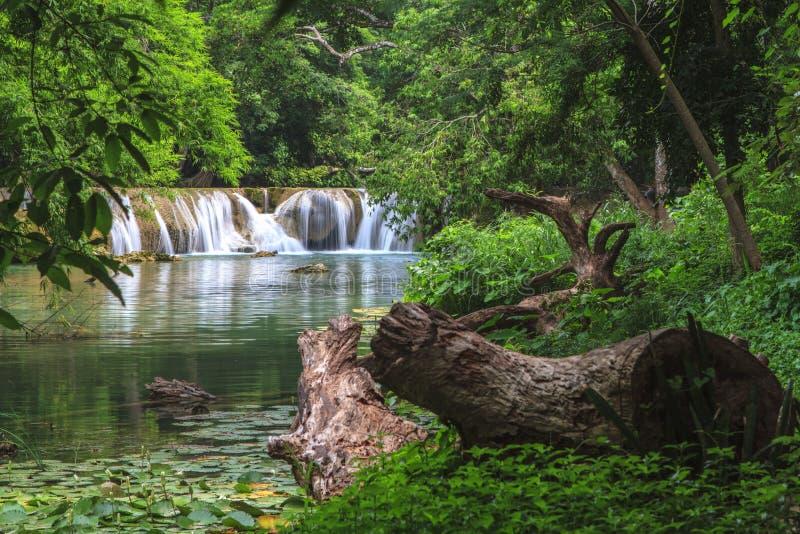 Cascada en el bosque tropical, Tailandia foto de archivo