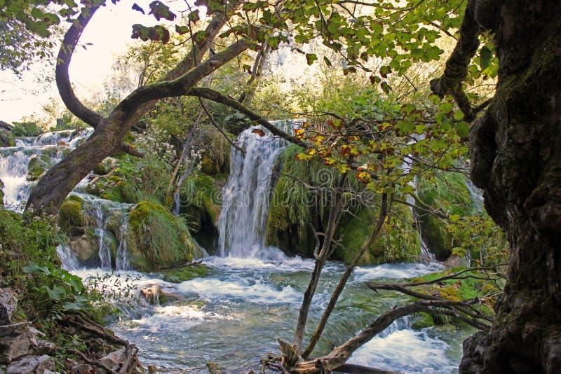 Cascada en el parque nacional Croacia de Plitvice imágenes de archivo libres de regalías