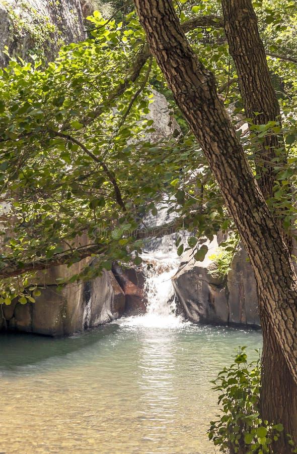 Cascada en el río de la miel fotos de archivo libres de regalías