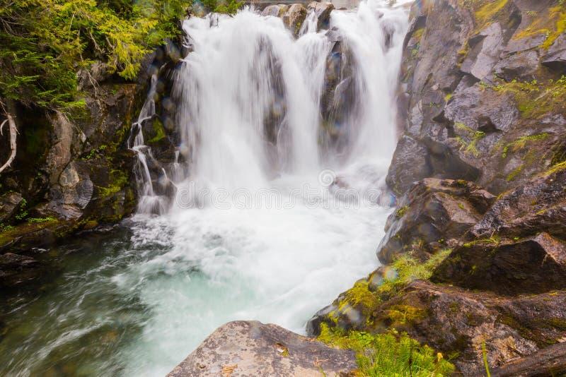 Cascada en el río del paraíso, Mt rainier imagen de archivo