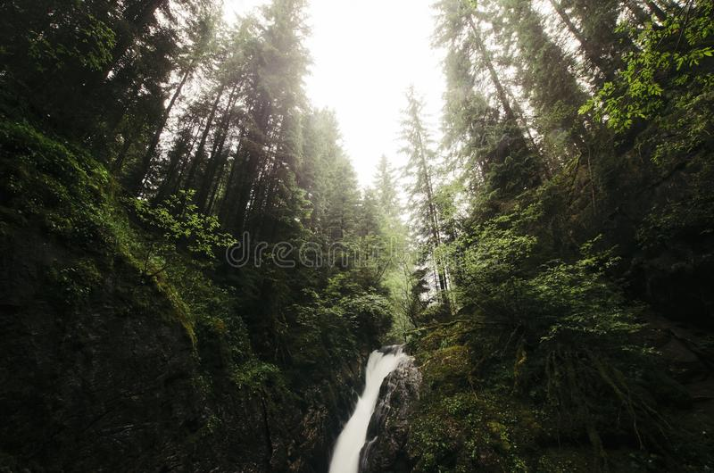 Cascada en el río salvaje de la montaña fotos de archivo