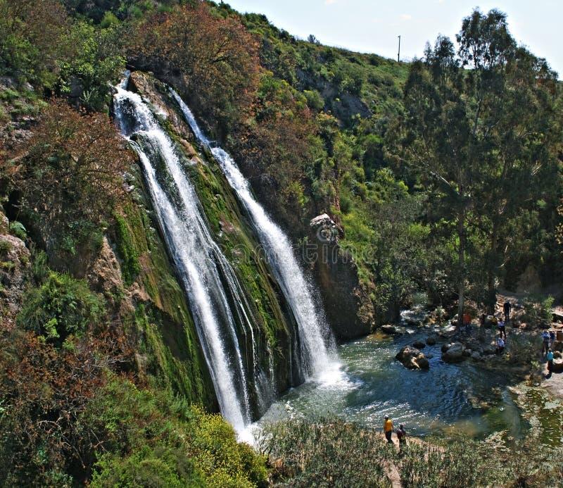 Cascada en Israel fotografía de archivo